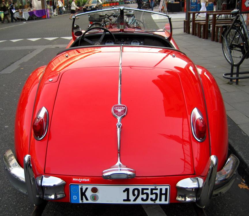 Jaguar_2008-1.JPG