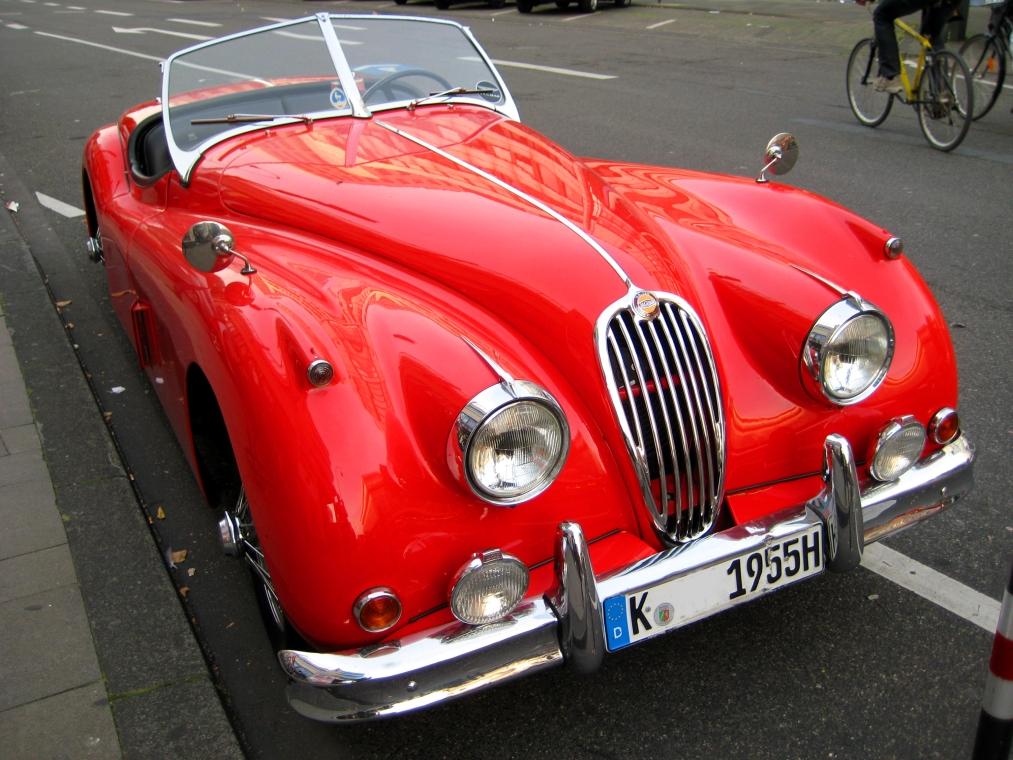 Jaguar_2008-2.JPG