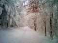 eifel_winter_2006.jpg