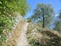 2013_Gardasee_Wanderweg.JPG